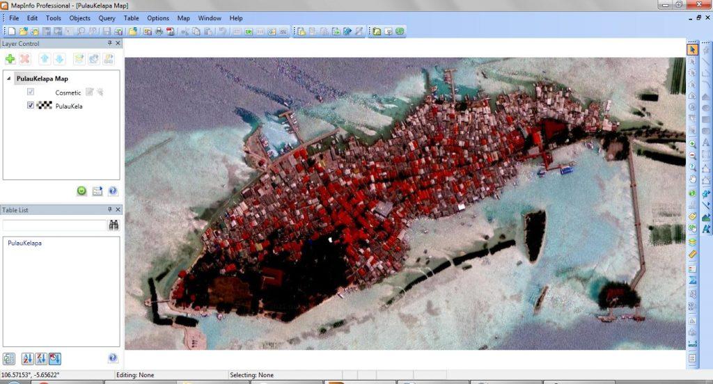 Hasil Download Citra Satelit Berkoordinat dibuka di MapInfo Professional